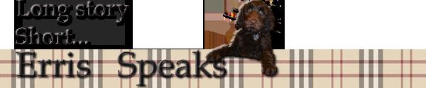 Erris-logo-4-black1.png