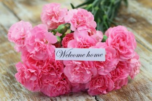 welcome home roses